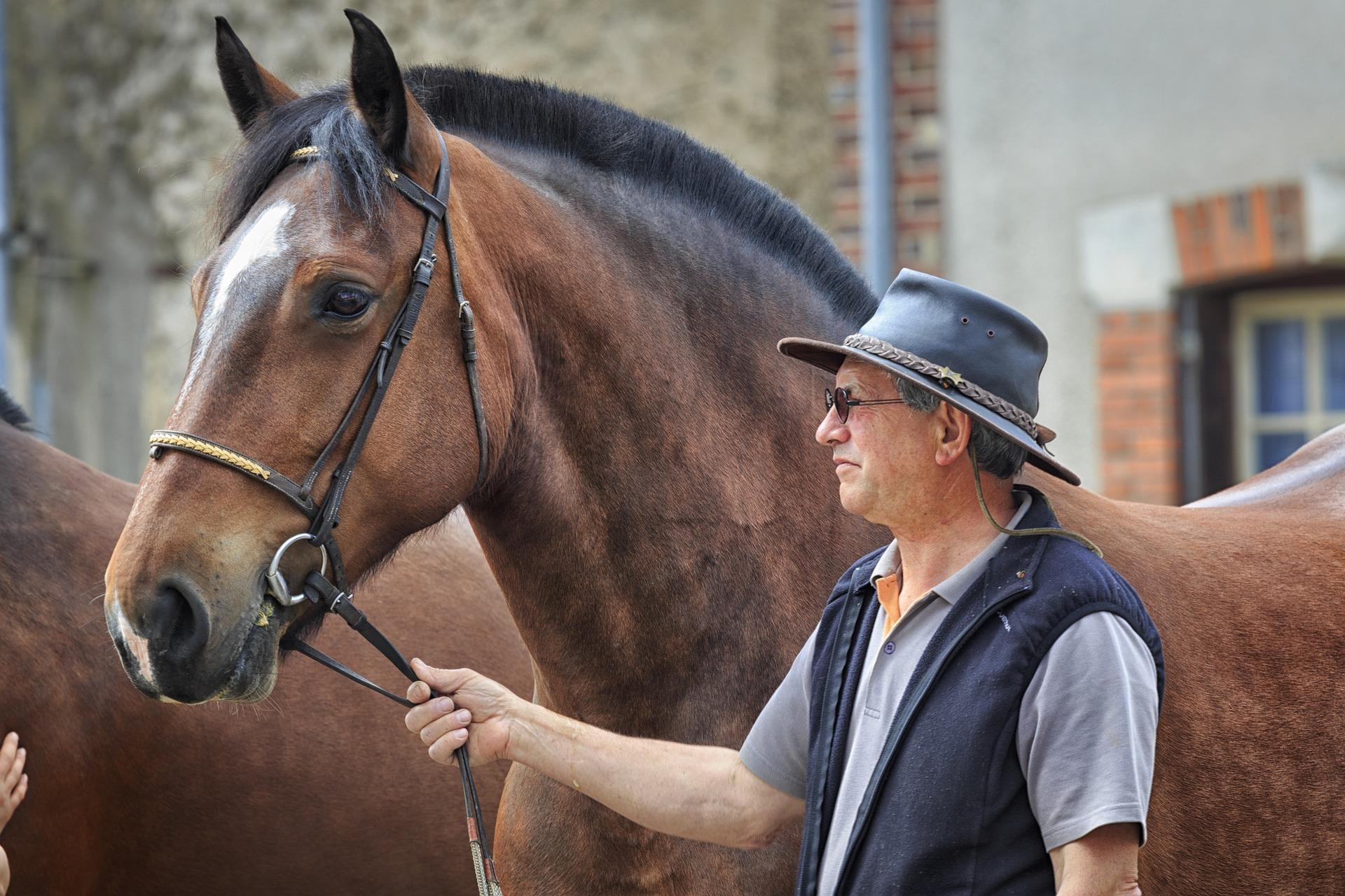 איש מוביל סוס