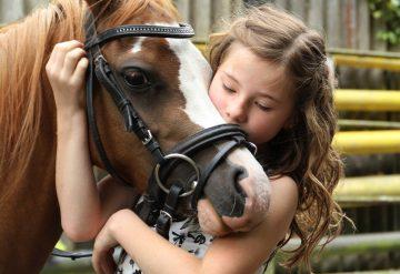ילדה מחבקת סוס